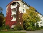 Vorschaubild für Wohnung:  Friedrich-Löffler-Str. 11 (Hoyerswerda) 2