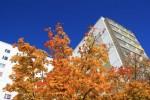 Vorschaubild für Wohnung:  Straße des Friedens 1 (Hoyerswerda) 4