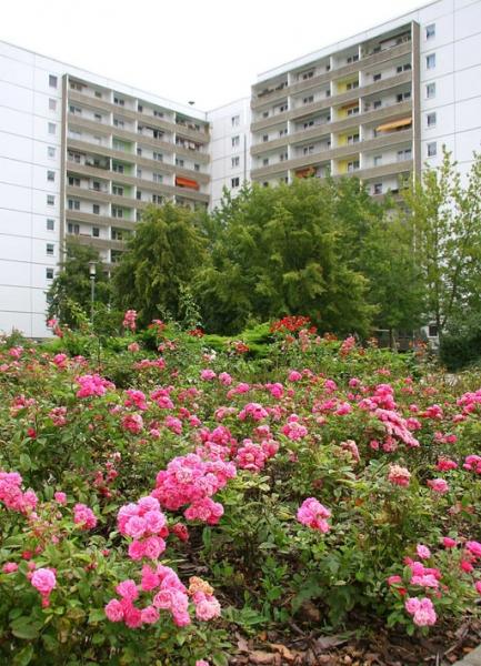 Vorschaubild für Wohnung:  Straße des Friedens 2 (Hoyerswerda) 3